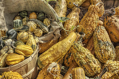 Photograph - Autumn Harvest by Jason Politte