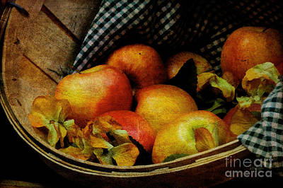 Photograph - Autumn Harvest by Lois Bryan