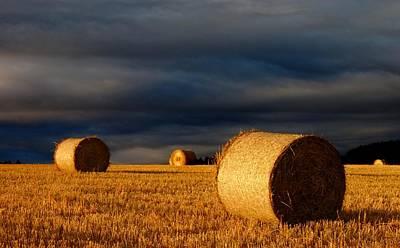 Photograph - Autumn Harvest by Macrae Images