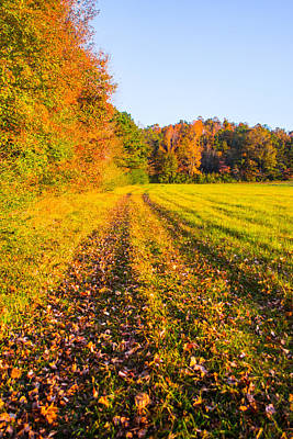 Photograph - Autumn Harvest by Parker Cunningham