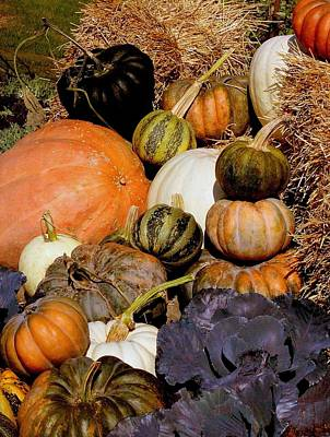 Autumn Harvest Art Print by Rosanne Jordan