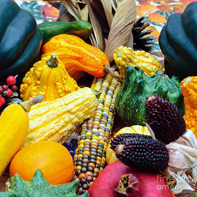 Photograph - Autumn Harvest by Tikvah's Hope