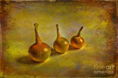 Onion Photograph - Autumn Harvest by Veikko Suikkanen