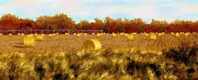 Autumn Hay Art Print