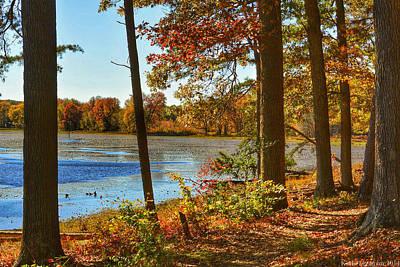 Photograph - Autumn II by Kathi Isserman