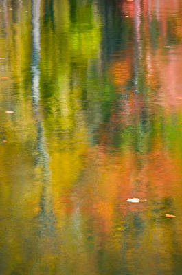 Photograph - Autumn Impressions by Joan Herwig