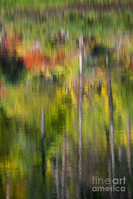 Autumn Impressions Art Print by Mike  Dawson