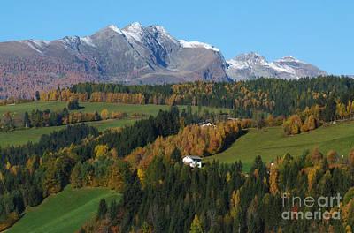 Photograph -  Austrian Autumn by Phil Banks