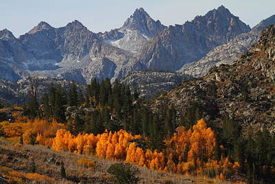 Autumn In Bishop Canyon In The Eastern Sierras Art Print by Jetson Nguyen