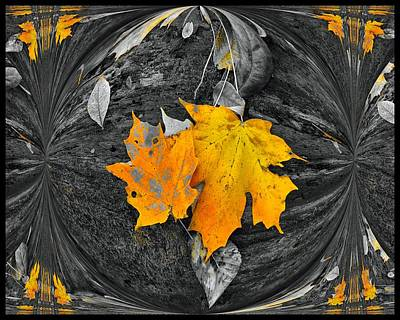Selective Color Digital Art - Autumn In Color by Dan Sproul