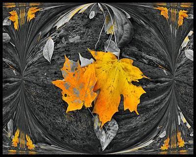 Digital Art - Autumn In Color by Dan Sproul