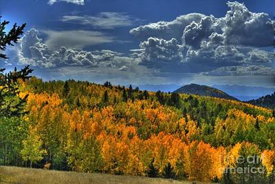 Photograph - Autumn In Colorado by Tony Baca