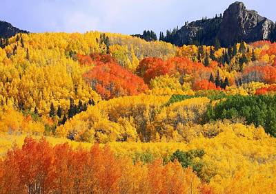 Photograph - Autumn In Full Display At Kebler Pass by Jetson Nguyen