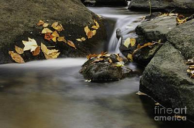 Autumn In Hackelbarney II Art Print