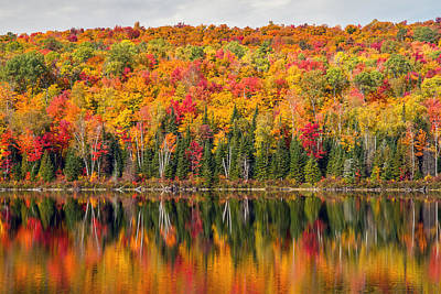 Photograph - Autumn In La Mauricie National Park by Pierre Leclerc Photography