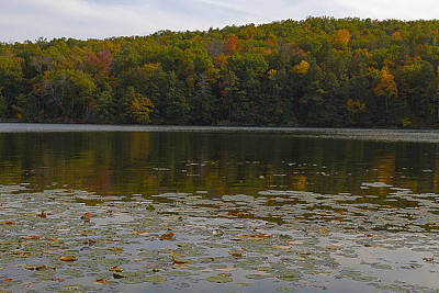 Photograph - Autumn In Lake Taghkanic State Park by Steve Belovarich