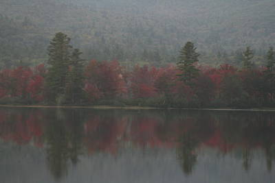 Photograph - Autumn In Maine by Terry Burgess