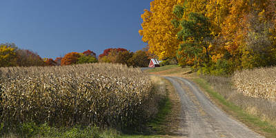 Photograph - Autumn In Minnesota by Garry McMichael