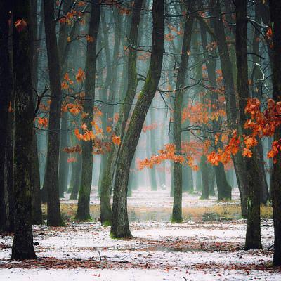 Fall Snow Wall Art - Photograph - Autumn In My Soul by Alexandra Fira