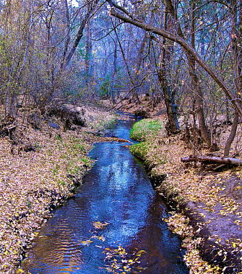 Art Print featuring the photograph Autumn In New Mexico by John Babis