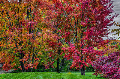 Photograph - Autumn In Pristine Colors by Gene Sherrill