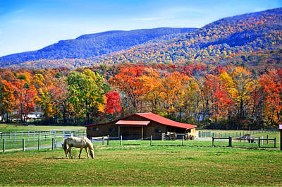 Autumn In Rural Virginia  Art Print