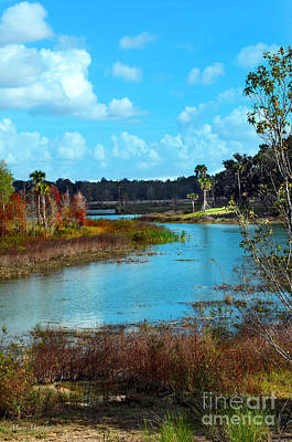 The Village Digital Art - Autumn In Sumter County by Mary Machare