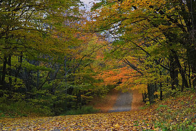 Autumn In The Caledon Hills Art Print by Gary Hall