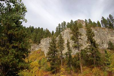 Photograph - Autumn In The Canyon by Dakota Light Photography By Dakota