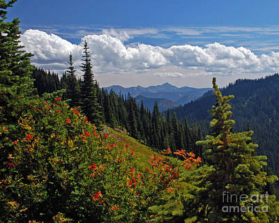 Photograph - Autumn In The Cascades by Chuck Flewelling