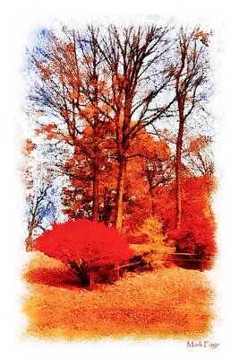 Dap Photograph - Autumn In The City Park by Mark Fuge