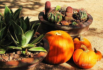 Fall Scenes Photograph - Autumn In The Desert by Marilyn Smith