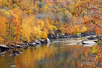 Photograph - Autumn In The Gorge by Larry Ricker