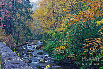 Autumn In The Great Smoky Mountains V Art Print