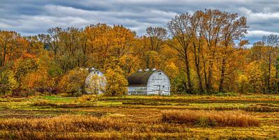 Autumn In The Meadows Art Print