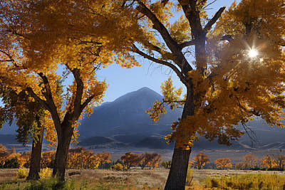 Golden Photograph - Autumn In The Mountains by Andrew Soundarajan