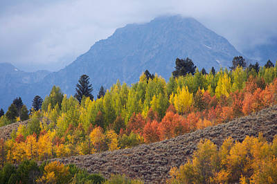 Photograph - Autumn In The Mountains by Byron Jorjorian