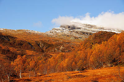 Autumn In The Mountains Art Print by Gry Thunes