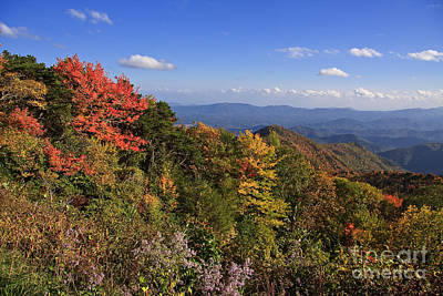 Photograph - Autumn In The Mountains by Jill Lang