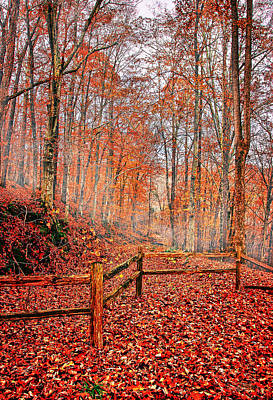 Misty Photograph - Autumn In The Mountains by Marcia Colelli