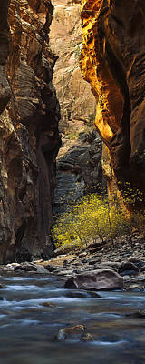 Zion National Park Photograph - Autumn In The Narrows by Andrew Soundarajan