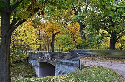 Photograph - Autumn In The Park by Bruce Bley