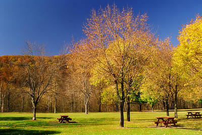 Autumn Scene Photograph - Autumn In The Park by Joann Vitali