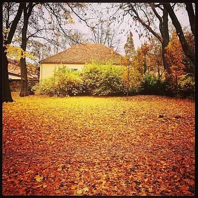 Iphone 4s Photograph - Autumn In The Park #trebic #třebíč by Jan Kratochvil