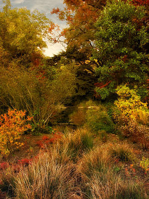 Digital Art - Autumn In The Rock Garden by Jessica Jenney