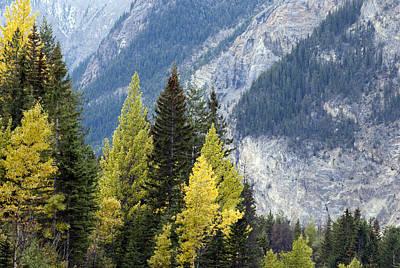 Autumn In The Rockies Art Print