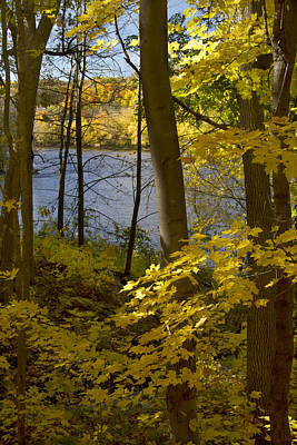 Photograph - Autumn In The St Croix River Valley by Garry McMichael
