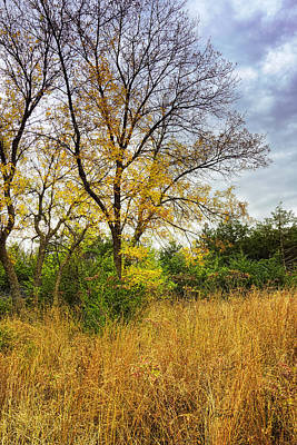 Photograph - Autumn In The Tall Grass Prairie - Landscape Photography by Ann Powell