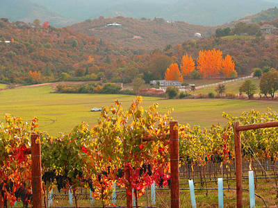 Art Print featuring the photograph Autumn In The Valley by Brooks Garten Hauschild