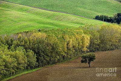 Italian Landscapes Photograph - Autumn In Val D'orcia Tuscany Italy by Robert Leon